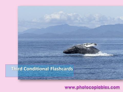 Third conditionals flashcards